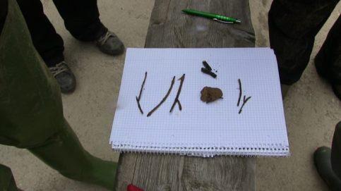 Las muestras orgánicas encontradas en las profundidades del túnel de Ravne.