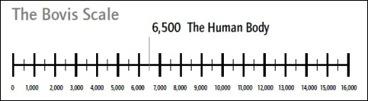 The Bovis scale