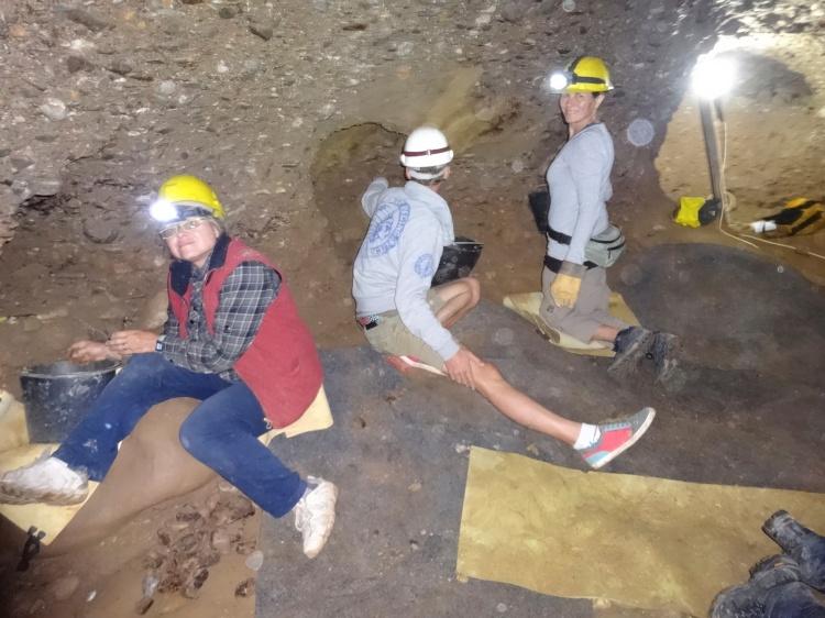 Voluntarios excavando la cámara del megalito K5 en 2013