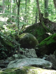 Esfera de piedra en el bosque de Zavidovici
