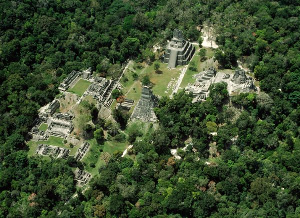 world-heritage-fun-sites-threatened-mirador-guatemala_27815_600x450