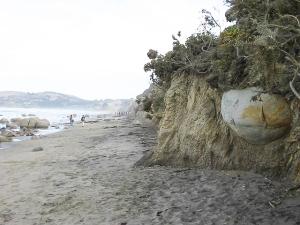 MOERAKI Shouth Island (Nuova Zelanda) 17/01/2010
