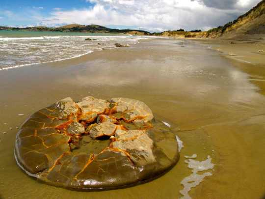 Resto de una esfera Moeraki desintegrada en la arena