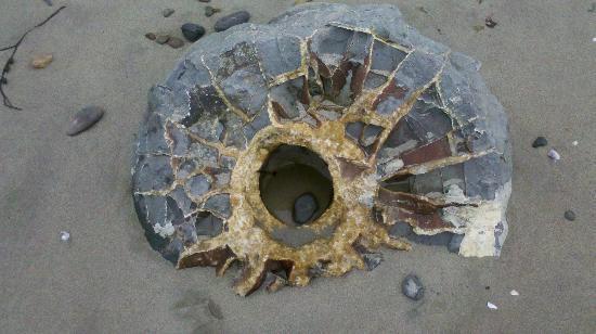 Resto de una esfera Moeraki con agujero