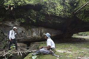 Relieve tallado sobre una roca encontrado encontrado en la jungla