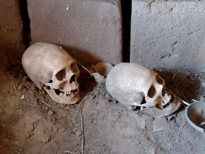 Dos más cráneos del mismo sitio