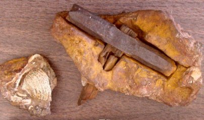 """The London Hammer"", o el Martillo de Londres de 400-500.000.000 de años."