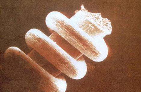 nano-coils