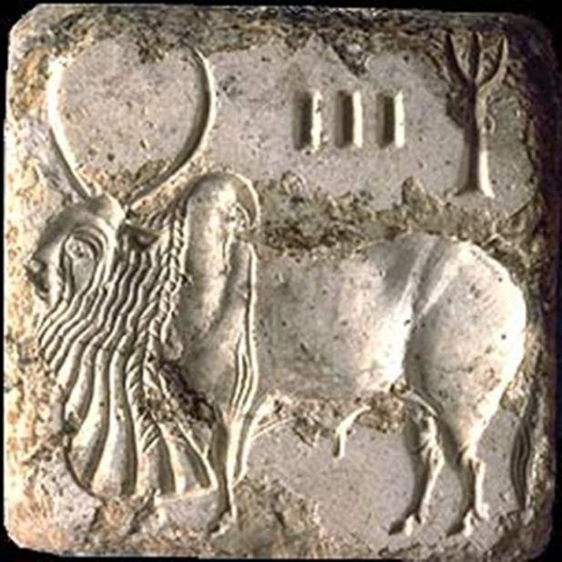 Mohenjo-Daro, relieve de un toro