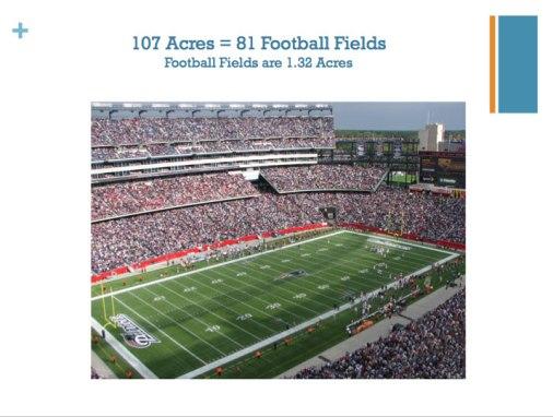G.El sitio es de 107 hectáreas, el tamaño de 81 campos de fútbol