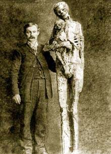 California-giant skeletons-picture.jpg