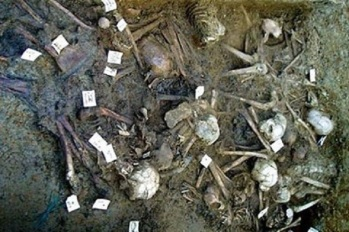 Archaeologists Discover Remains of Egyptian Army From the Biblical Exodus in Red Sea.jpg