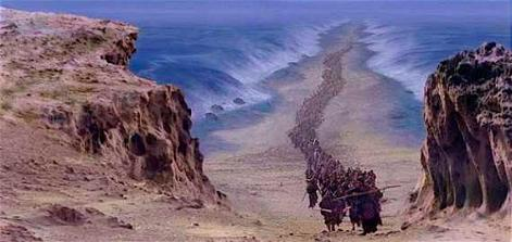 biblical-exodus-archaeologists-discover-remains-of-egyptian-army-in-red-sea-123111.jpg