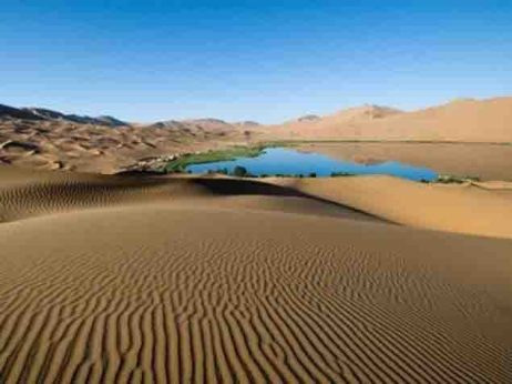 Oasis-en-medio-del-desierto.jpg
